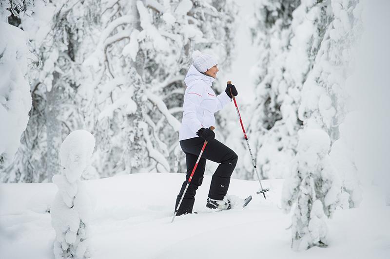 Finlandia: nella selvaggia natura invernale