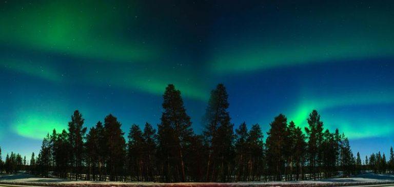 Wild Christmas in Finlandia