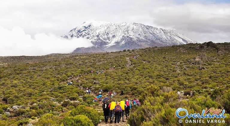 Kilimanjaro via Marangu
