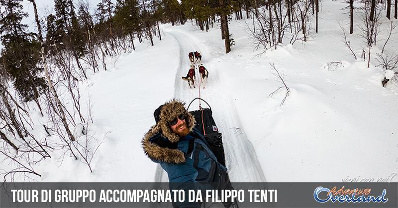 Lapponia svedese: avventura in sleddog con Filippo Tenti