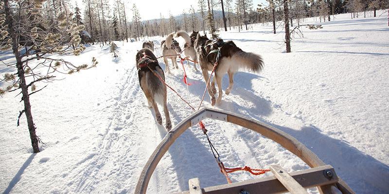 Winter fun in Finlandia
