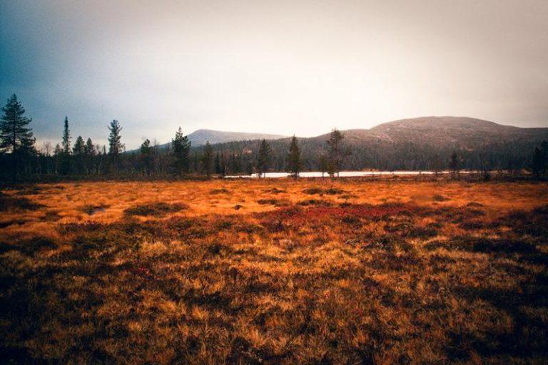 Lapponia: trekking al Monte Halti, dalla Finlandia alla Norvegia